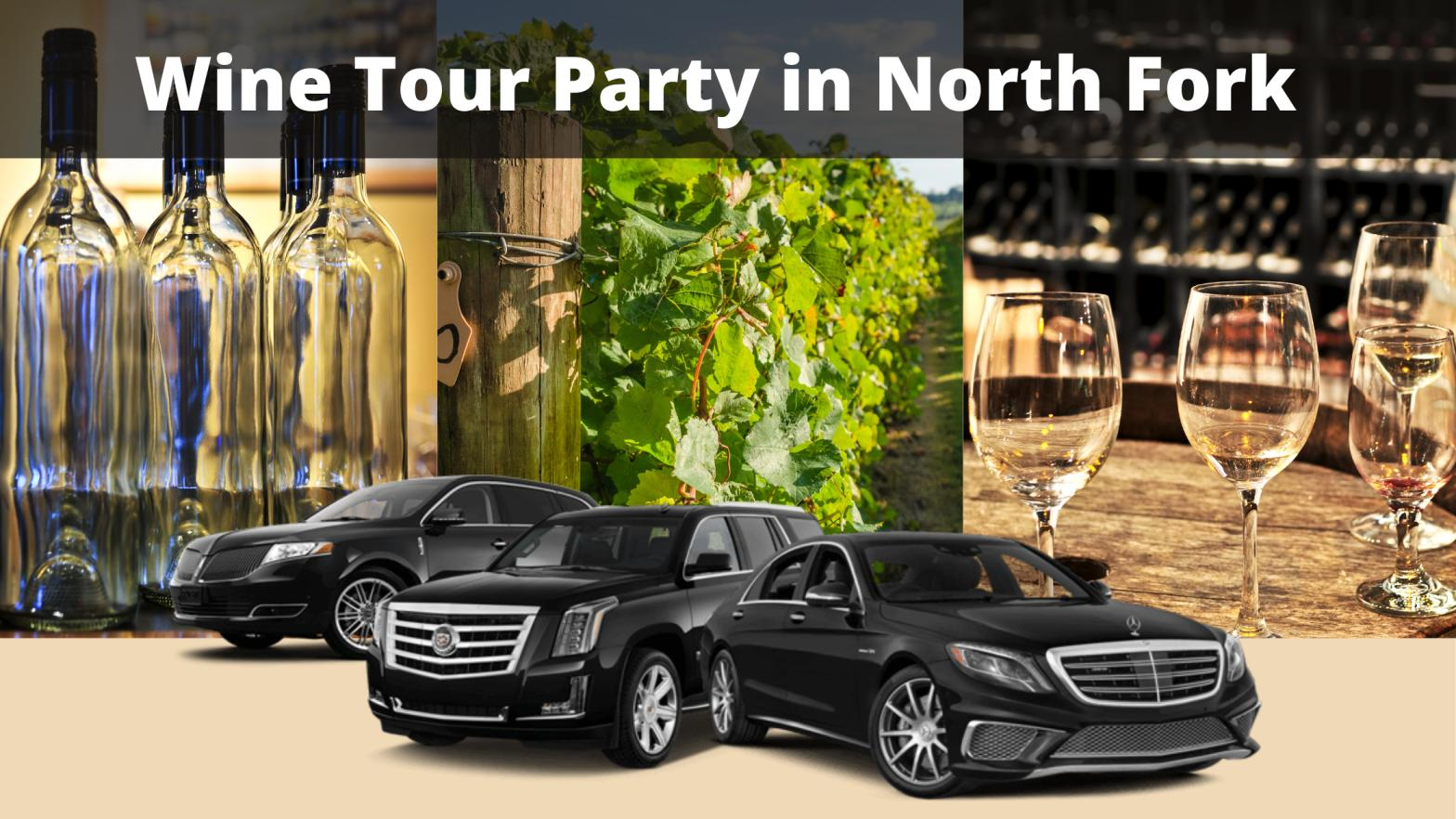 Wine Tour Party in North Fork