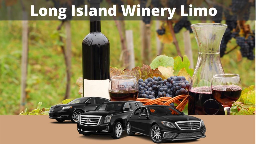 Long Island Wine Tasting Tours from Nassau County