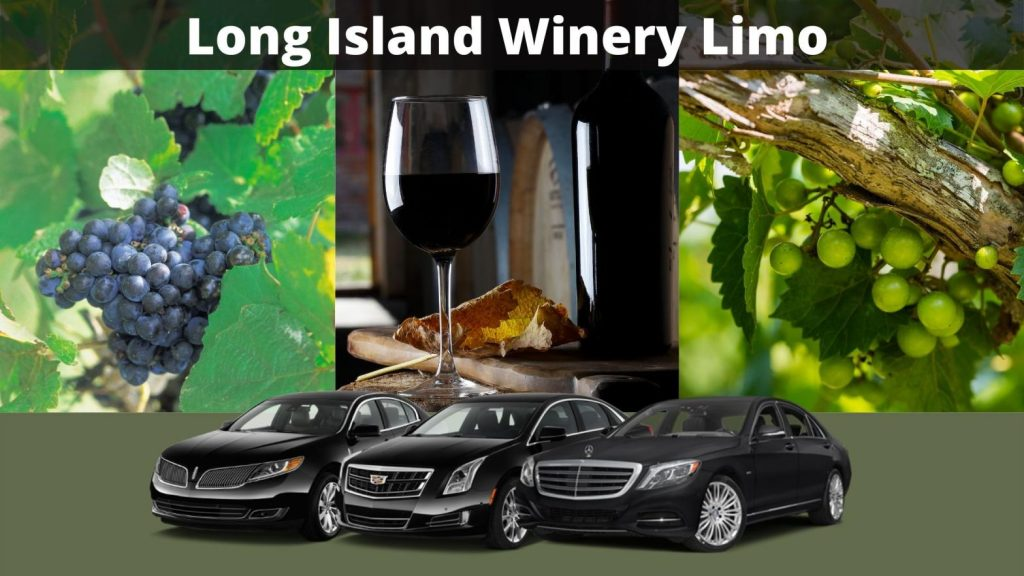 5 Best Wineries and Vineyards on Long Island